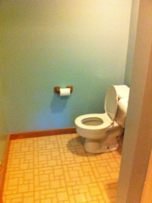 Old toilet and toilet paper holder