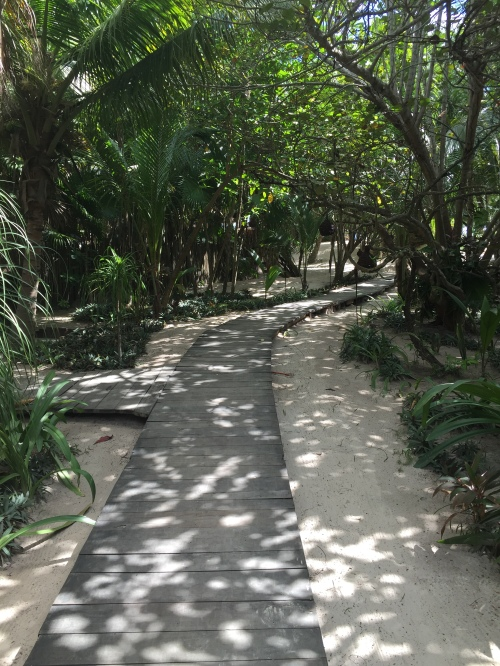 A path to a beach club