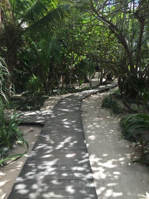 A path to a beach club
